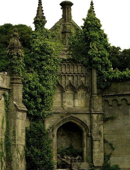 Ivy Castle Walls, Margam, Wales