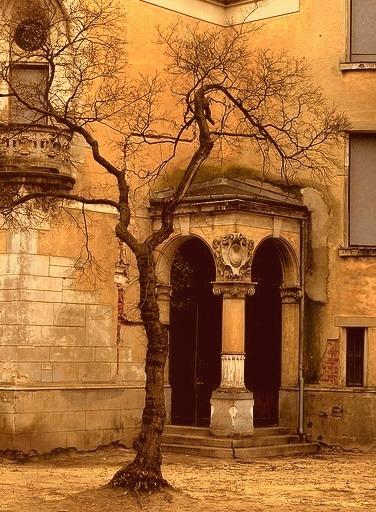 Abandoned Castle, Konstancin, Poland