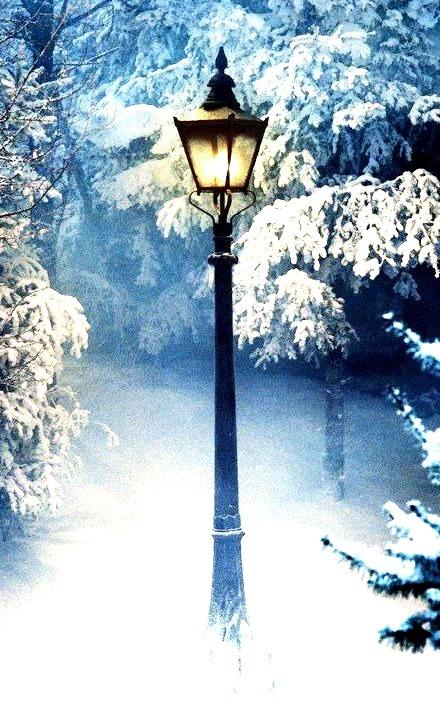 Snow Lantern, Narnia